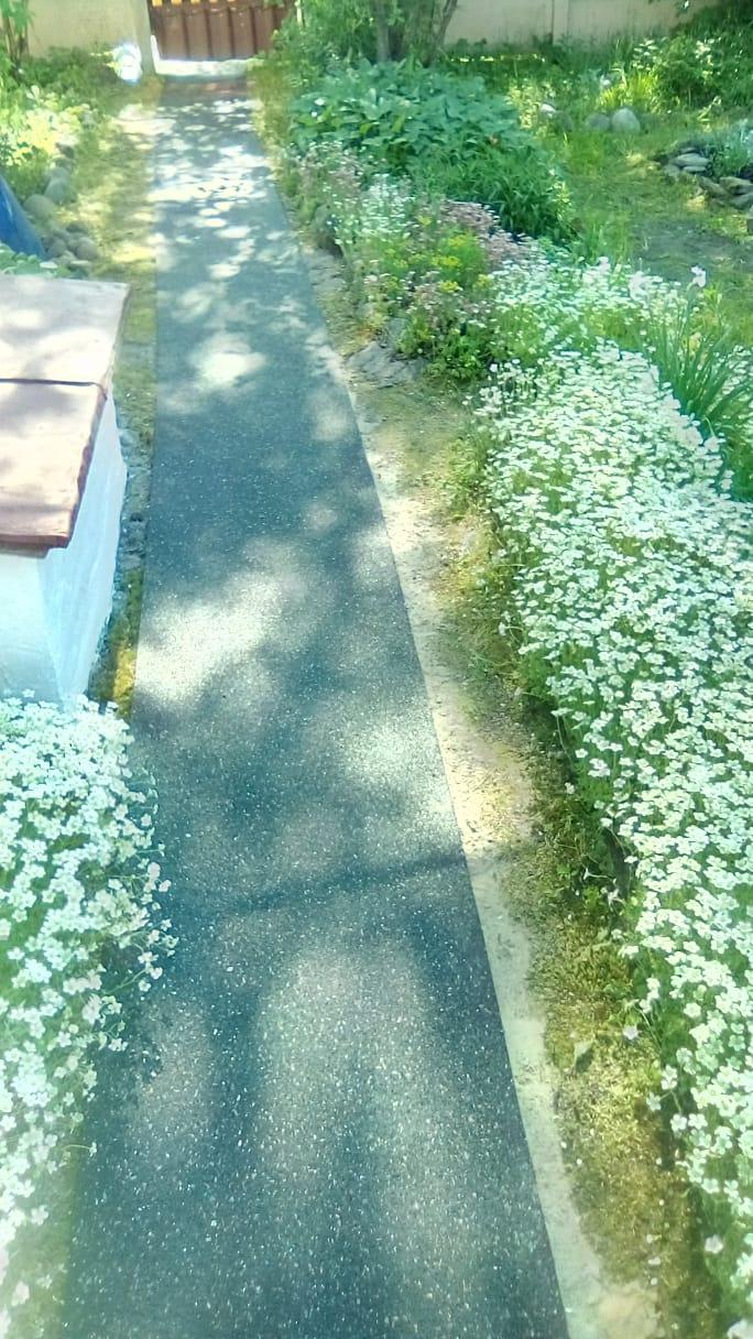 резиновые дорожки в сад